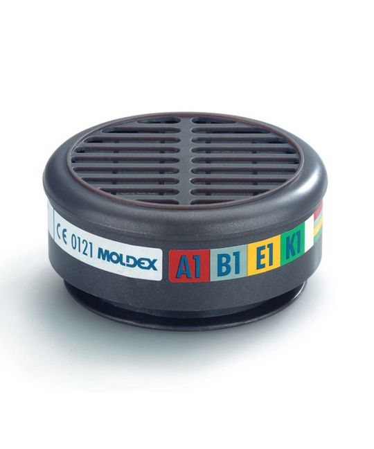 MOLDEX 8900 Combination Filter (Pair)